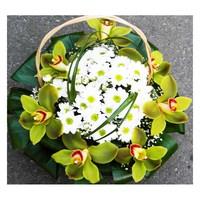 № 0222 дикая орхидея